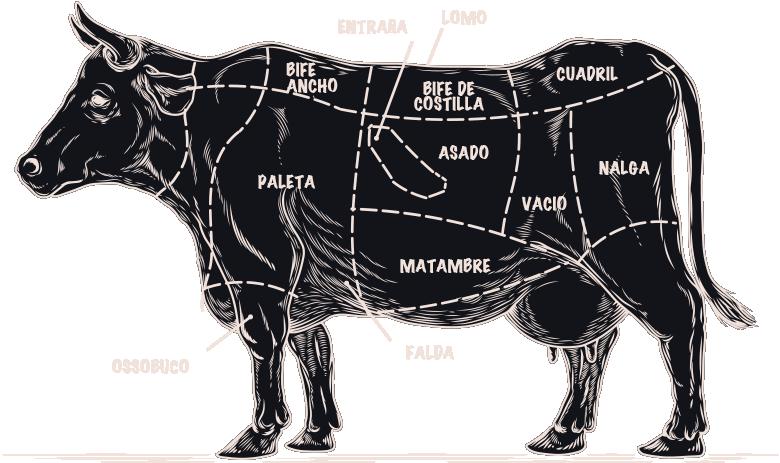 CORTES-Canta-el-Gallo